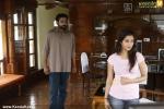 koppaiyile kodumkattu malayalam movie stills 100 060