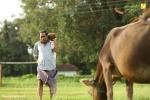kuttanpillayude sivarathri stills 0923