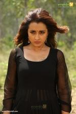mohini trisha movie stills 098289 4
