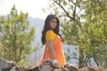 nenu local tamil movie keerthi suresh pics 324 001