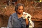 paathi malayalam movie joy mathew stills 100