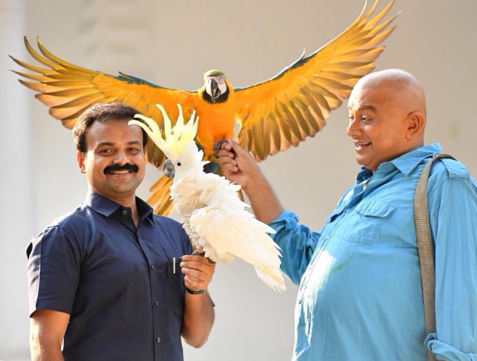kunjako boban in panchavarnathatha movie stills  002