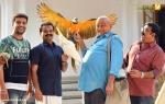 panchavarnathatha movie stills 017
