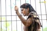 sakhavinte priyasakhi malayalam movie neha saxena pics 543 001