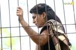 sakhavinte priyasakhi malayalam movie neha saxena pics 543 002