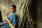 savarakkathi tamil movie poorna pics 209 002