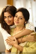 shajahanum pareekuttiyum malayalam movie stills 100 001