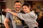 sultan bollywood movie stills 100