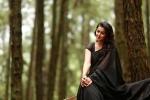 team 5 malayalam movie nikki galrani photos 097 006