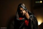 tiyan malayalam movie murali gopi photos 109 001
