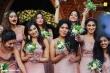 perly-mani-sreenish-marriage-photos-10