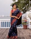 aditi-ravi-saree-photos-hd-003