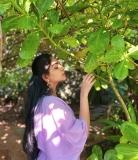 ahaana-krishna-instagram-picuki-006