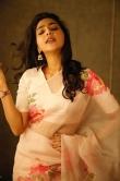 Aishwarya Lekshmi saree photos2908-5