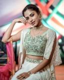 amala-paul-images-saree.webp-002