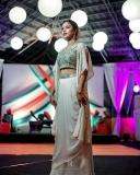 amala-paul-images-saree.webp-003
