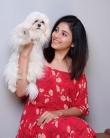 anjali-latest-images-006