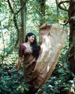 Anumol latest saree photos1234-1