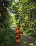 actress-anumol-latest-photos-016