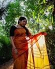 anumol saree new photos0195-002