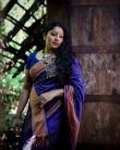 anumol saree new photos0195