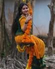 actress-anu-sithara-saree-photos-005