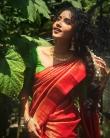 anupama parameswaran new onam saree photos-002