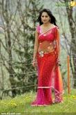 Anushka Shetty Latest Hot Stills in Red Transparent Saree  | Anushka Wiki
