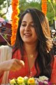 anushka-shetty-latest-pictures1