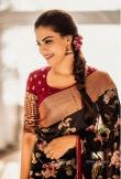 anusree saree photos 4534-002