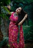 bhama latest saree photos