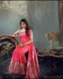 sai-dhanshika-images-001