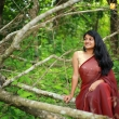 esther-anil-in-saree-latest-photos-284