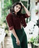 1_gayathri-suresh-instagram-pics-005