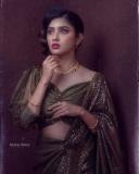 gayathri-suresh-latest-images-in-saree-02-001