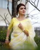 gayathri-suresh-latest-saree-images-03