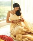 actress kalyani priyadarshan new onam kerala saree photos-002