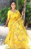 kanika saree photos new1234