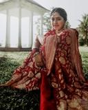 meera-nandan-wedding-saree-photos