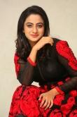 namitha-pramod-new-photos-093292