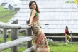 nayanthara-latest-pics-456-00216