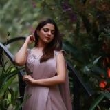 nikhila-vimal-latest-photos-in-saree-032-005