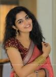 nikhila-vimal-latest-saree-images-091241