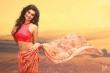 rachel-david-malayalam-actress-photos-124