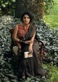 rima-kallingal-new-photos-in-saree-021-003