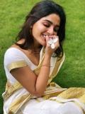 samyuktha-menon-latest-photos-in-kerala-set-saree-009