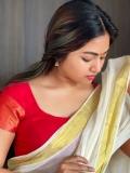 shalin-zoya-new-onam-photoshoot-in-kerala-saree-002