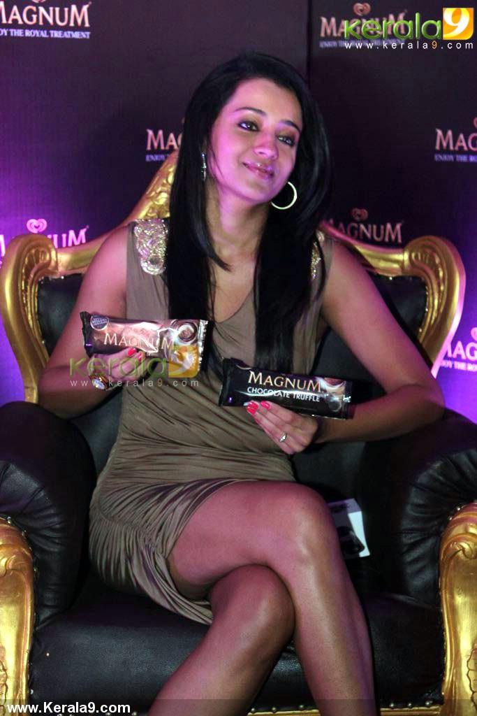 actress_trisha_krishnan_photos-02492
