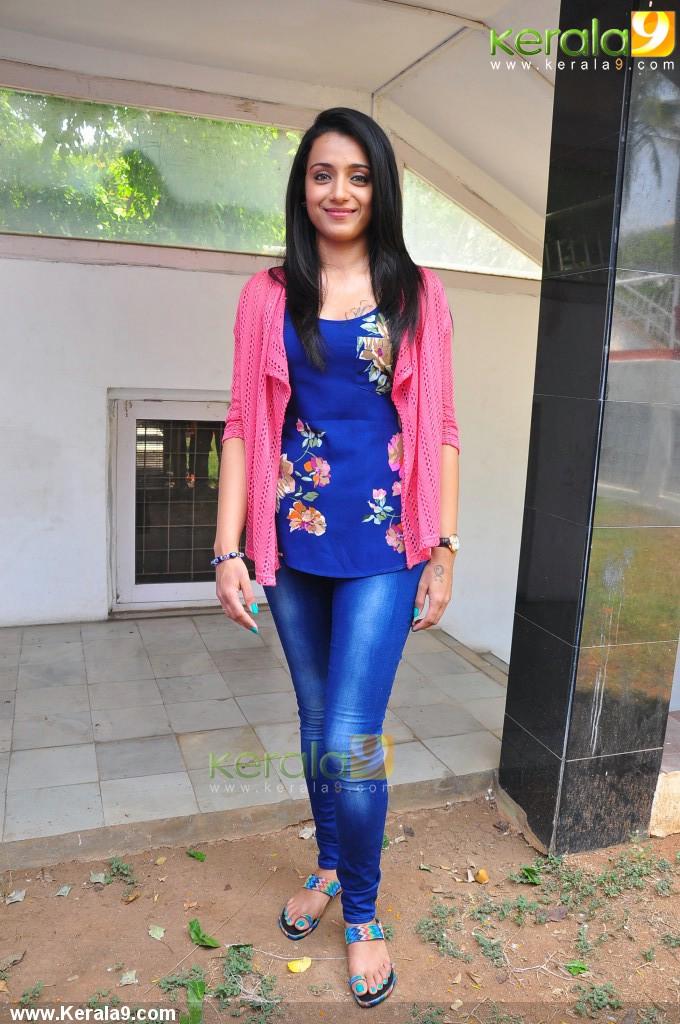 actress_trisha_krishnan_photos-02680
