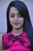 trisha_krishnan_latest_photos-00190
